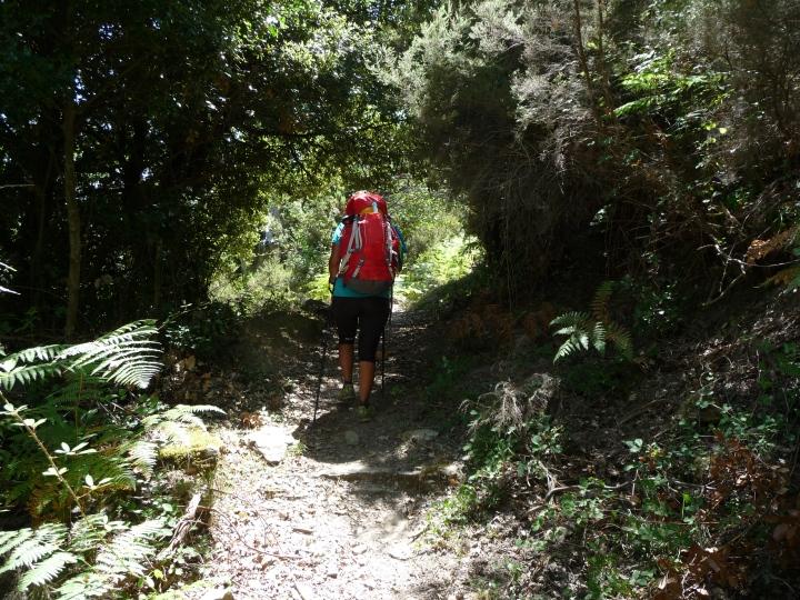 Corsica Mare Mare Nord - 2015 (20)