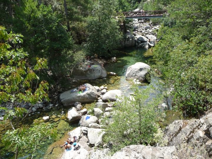 Corsica Mare Mare Nord - 2015 (34)