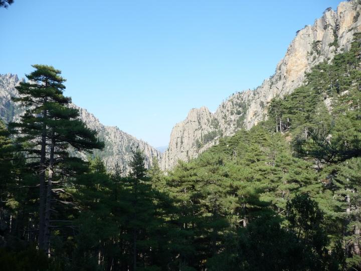 Corsica Mare Mare Nord - 2015 (40)